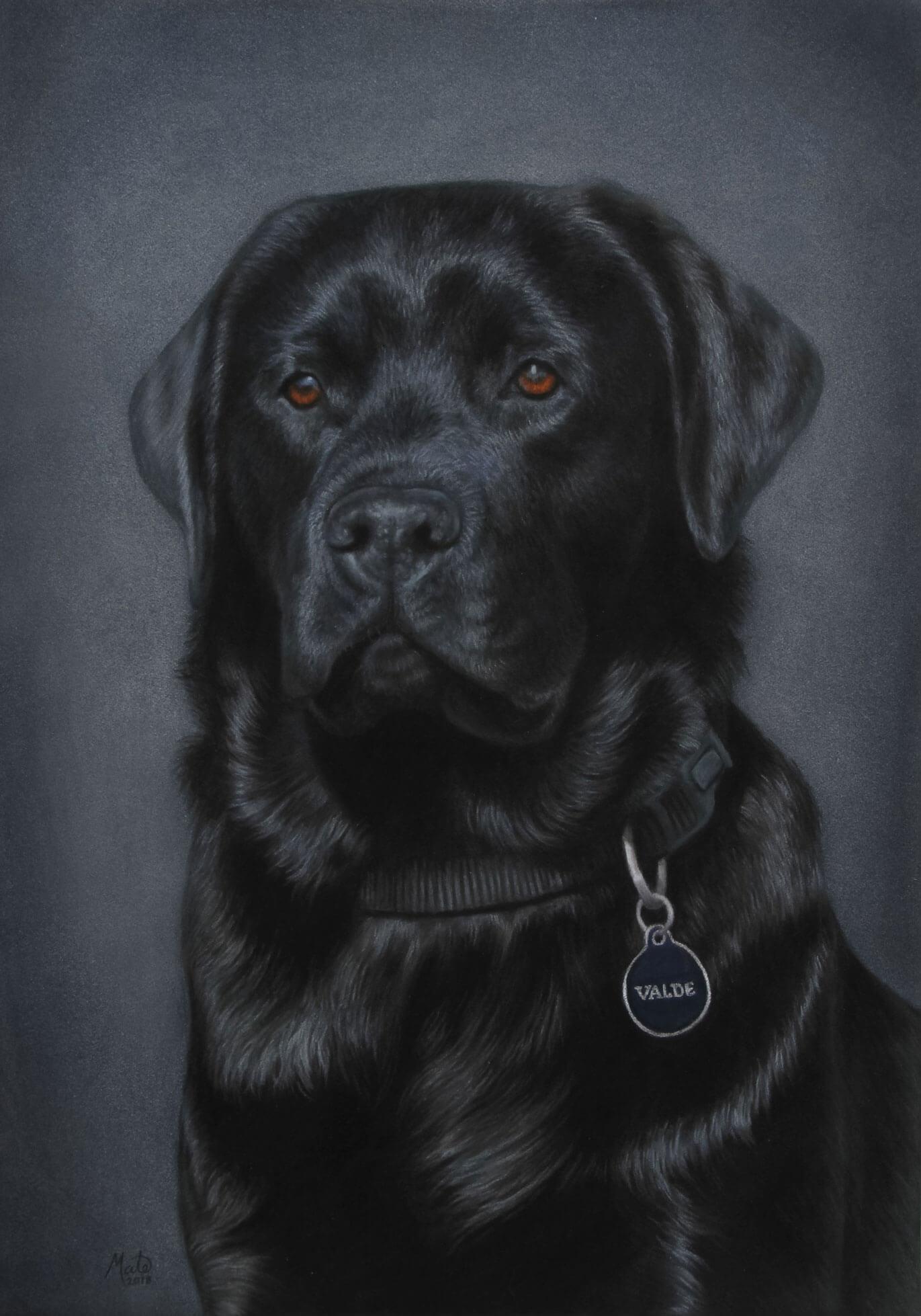 Pastel tegning af labrador hunden Valde
